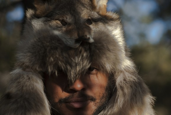 Thundercat, twenty-first century fox