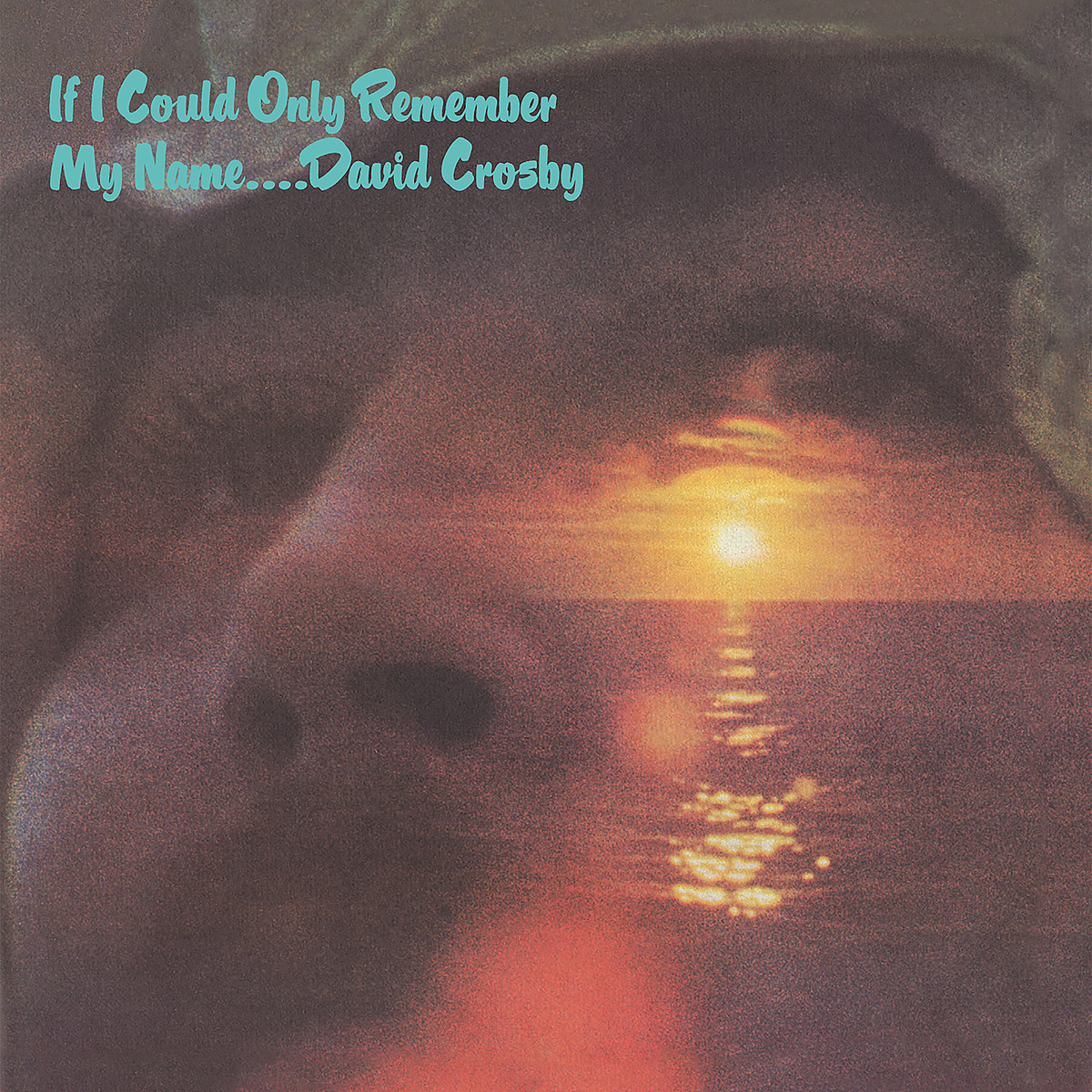 attachment-david-crosby-if-i-could-only-remember-my-name-50