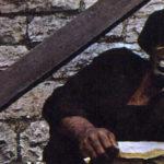 James Brown psychédélique !